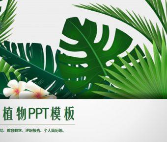 【植物背景PPT】精美的32頁植物背景PPT模板下載,動態可愛植物簡報的範本格式