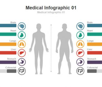 【臨床研究PPT】精美的21頁臨床研究PPT模板下載,動態臨床檢驗簡報的作業檔