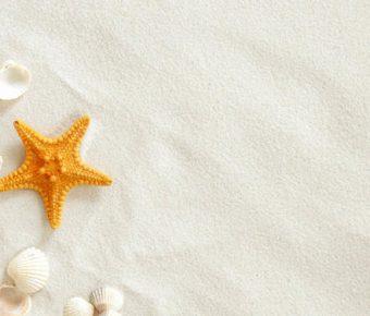 【PPT沙灘背景】無暇的10張PPT沙灘背景模板下載,靜態海灘貝殼素材的樣版檔