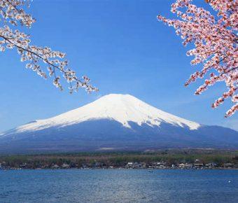 【PPT富士山背景】大器的11張PPT富士山背景模板下載,靜態日本櫻花封面的版型格式檔