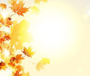 【PPT楓葉背景】精緻的7張PPT楓葉背景模板下載,靜態秋天落葉封面的範例格式