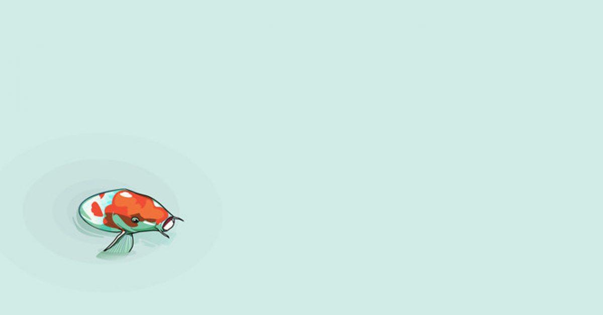 【PPT鯉魚背景】完美的1張PPT鯉魚背景模板下載,靜態復古錦鯉魚素材的版型作業檔
