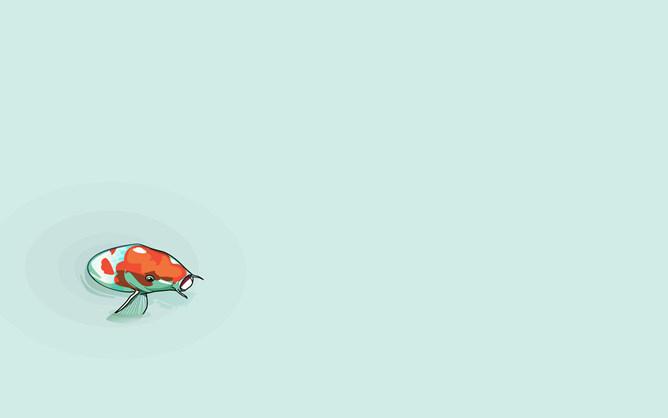 PPT鯉魚背景 模板下載 | 天天瘋PPT
