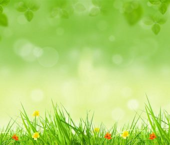 【PPT綠色背景】卓越的4張PPT綠色背景模板下載,靜態草地圖案素材的作業檔