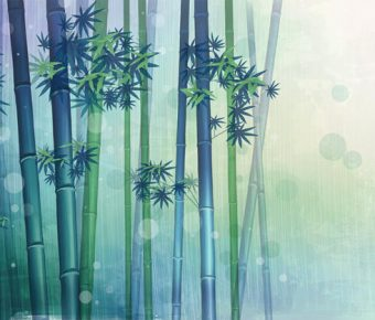 【PPT竹子背景】齊全的2張PPT竹子背景模板下載,靜態幽靜竹林素材的樣式作業檔