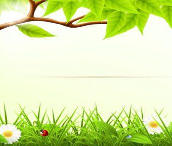 【PPT大樹背景】很棒的2頁PPT大樹背景模板下載,靜態卡通草地素材的版型格式檔