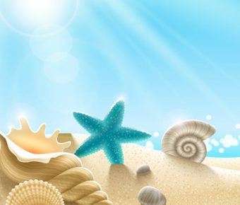 【PPT貝殼背景】完美的2頁PPT貝殼背景模板下載,靜態可愛海星圖案的範本檔