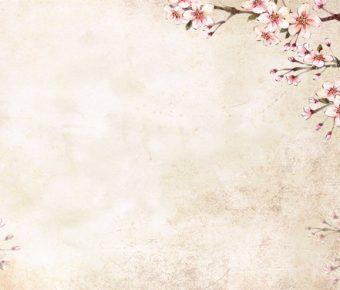 【PPT花朵圖案】創作感的8張PPT花朵圖案模板下載,靜態復古花背景的格式檔