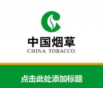 極致的8頁中國煙草公司官方PPT模板下載,靜態簡報檔主題範本